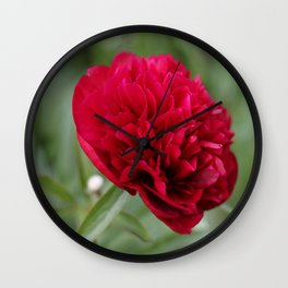 Red Peony in Bloom Wall Clock