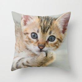 Smirking kitten Throw Pillow