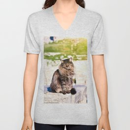 Are cats just gods in disguise? Unisex V-Neck