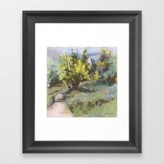 June in Colorado Framed Art Print