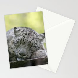 Leopard 2014-1001 Stationery Cards