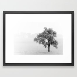solace Framed Art Print