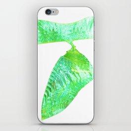Minimalist Green Cocoon with Ferns iPhone Skin
