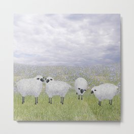 sheep and chicory Metal Print