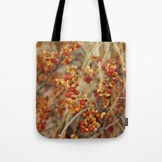 Fall's End Tote Bag
