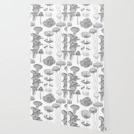 Mushrooms - black and white, illustration, kitchen, vintage, botanical, garden, ink, hand-draw Wallpaper