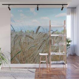 beautiful barley field Wall Mural