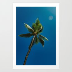 palm tree ver.summer Art Print