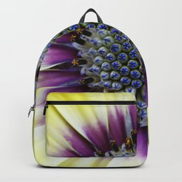 Center of Attention Backpack