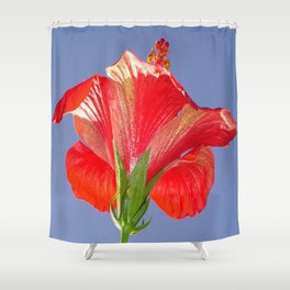 Side View of Scarlet Red Hibiscus In Bright Light Shower Curtain