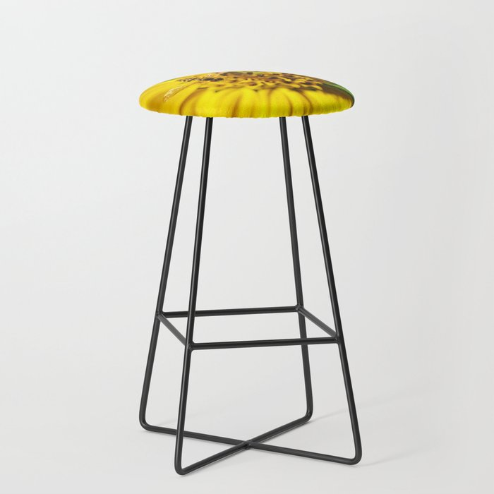 Hovering in the Sun Bar Stool