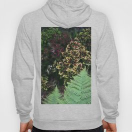 Painted Nettles and Ferns Hoody