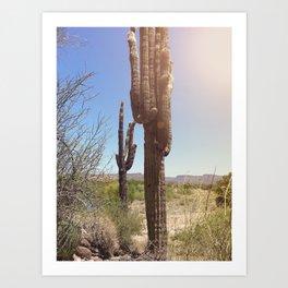 Saguaro spirit Art Print