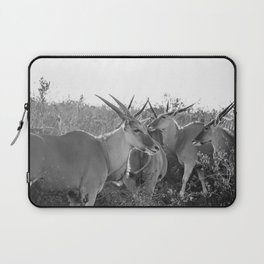 Herd of Eland stand in tall grass in African savanna Laptop Sleeve