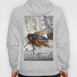 Red Eyed Cicada Hoody