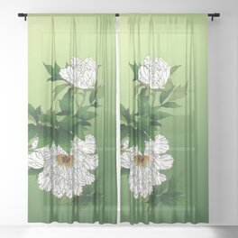 Vintage Japanese Sketch of Large White Peony Sheer Curtain