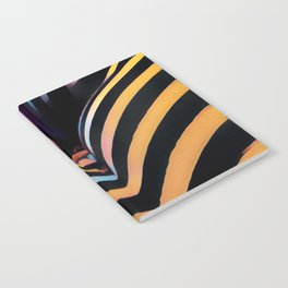 2026s-AK Striped Body Curves by Chris Maher Notebook