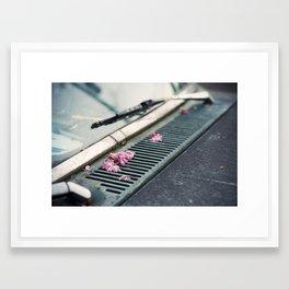 Oregon (spring) Framed Art Print