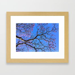 Blue Jacaranda 2/3 Framed Art Print