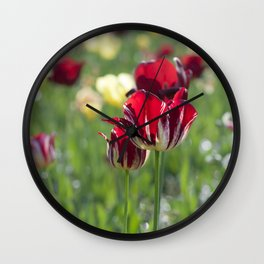 Spring is all over Wall Clock