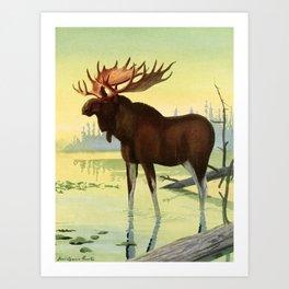 Fuertes, Louis Agassiz (1874-1927) - Burgess Animal Book for Children 1920 (Moose) Art Print