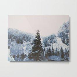 Coast Collective - Pacific Northwest Series Tree Line Metal Print