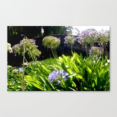 Foreground of a Pond Canvas Print