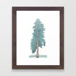 Giant Blue Spruce Framed Art Print