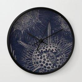 Vintage Radiolaria Diagram Wall Clock