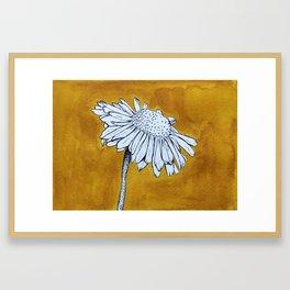 Bellis Framed Art Print