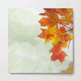 Wonderful autumn Leaf Pattern Metal Print