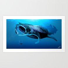 Manta Whale Art Print