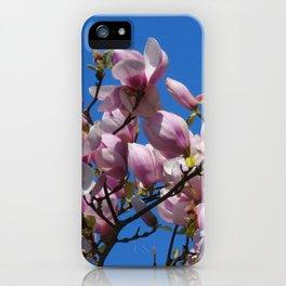 beautiful spring -2- iPhone Case