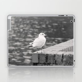 Gull Photograph Laptop & iPad Skin