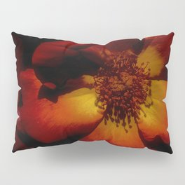 Tawny Autumn Roses Pillow Sham