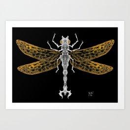 Royal Dragonfly Art Print