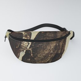 Vintage Print - Birds and Nature (1902) - Pileated Woodpecker Fanny Pack