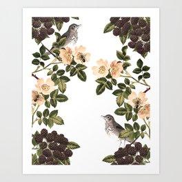 Blackberry Spring Garden - Birds and Bees Cream Flowers Art Print
