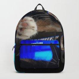 Sleeping Cat - Venture Catipalist Backpack