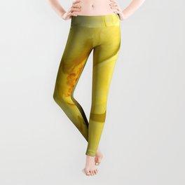 Yellow Rose Leggings