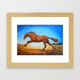 The Race Horse Framed Art Print