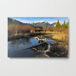 Vermilion Lakes Autumn - Banff Metal Print