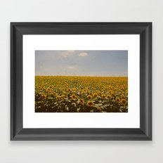 Vintage Sunflowers Framed Art Print