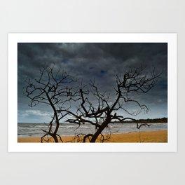 Cadaverous Tree Art Print