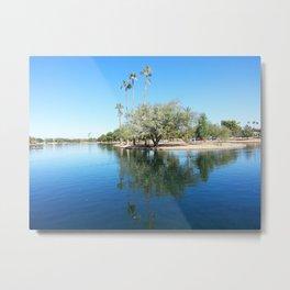 Palm Reflection Metal Print