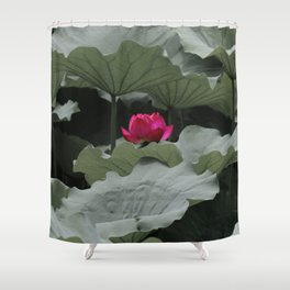 Nature's Pink Shower Curtain