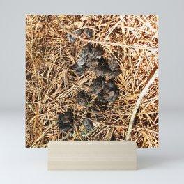 Watercolor Poop, Racoon 02, Kejimkujic, Nova Scotia, Canada Mini Art Print