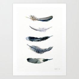 No. 478, Black bird feathers  Art Print