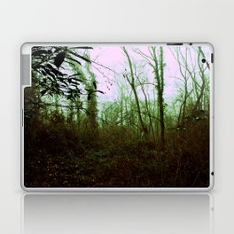 Into the woods. Laptop & iPad Skin