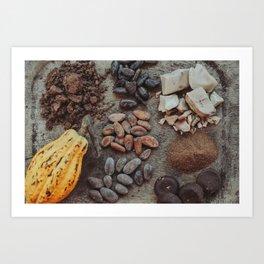 Cacao, beans, chocolate Art Print